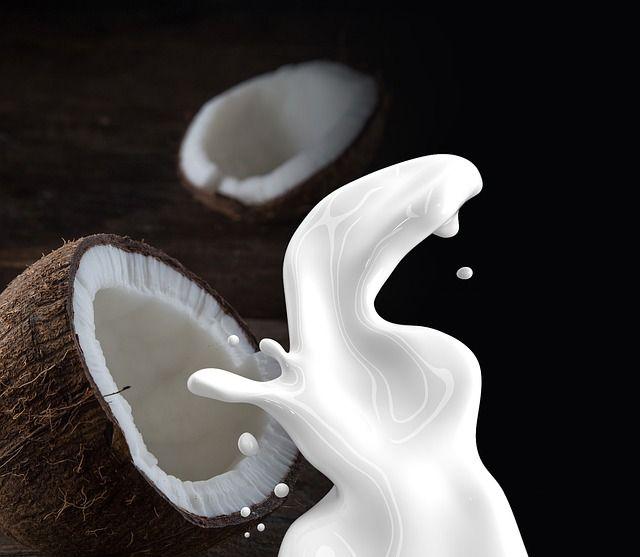 Le lait de coco : un élément indispensable pour une cuisine exotique