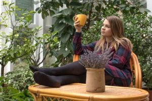 Créer votre jardin d'hiver : faites entrer la nature chez vous
