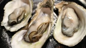 L'huître la perle de la mer